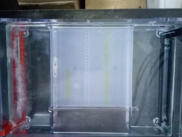34 specimens electrophoresis